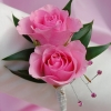 Pink Sweetheart Rose Boutonniere - Pink