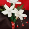 Stephanotis Boutonniere - Red