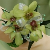 Dendrobium Orchid Corsage - Green