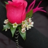 Hot Pink Rose Boutonniere - Premiere