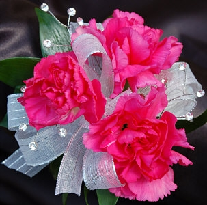 Hot Pink Mini Carnation Corsage Ht Pink