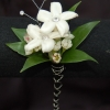 Jeweled Stephanotis Boutonniere - Premiere