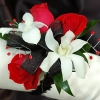 Red Sweetheart Rose and White Orchid Corsage - Black