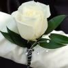 White Rose Boutonniere - Black