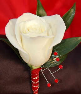 white rose boutonniere red