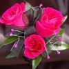 Hot Pink Sweetheart Rose Corsage - Ht Pink