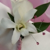 White Sweetheart Rose and White Orchid Boutonniere - Pink