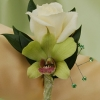 White Sweetheart Rose and Orchid Boutonniere - Green